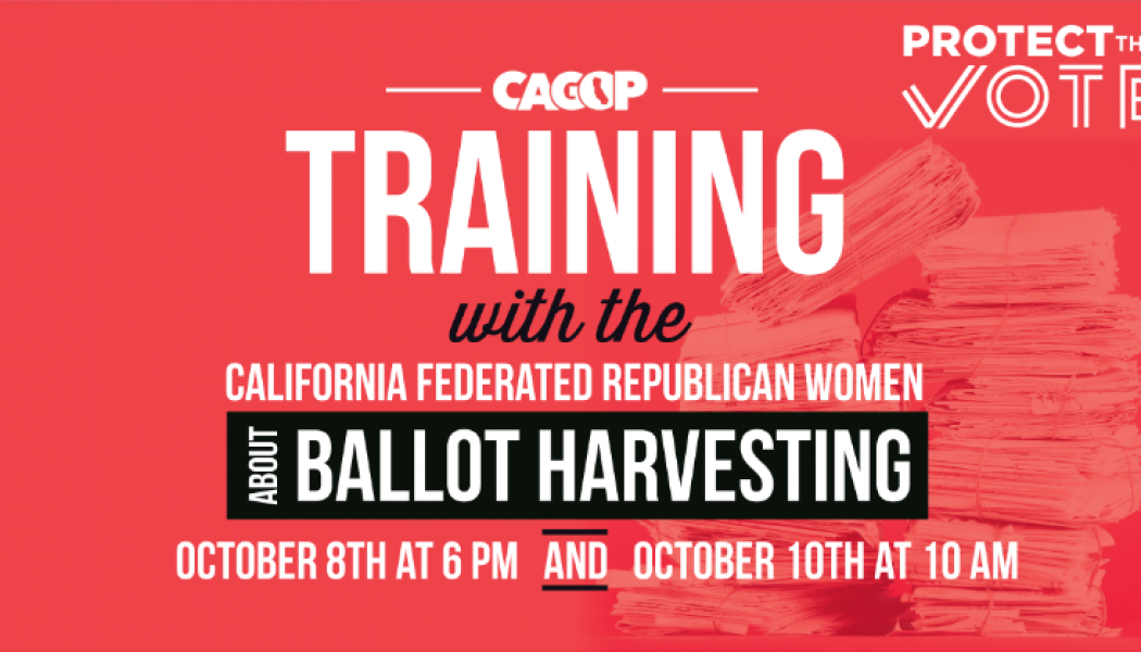 Action Alert Election Training