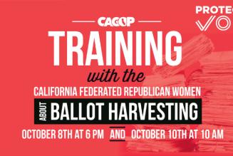 Action Alert Election Training